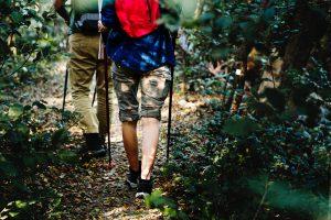 retkeilijät metsäpolulla